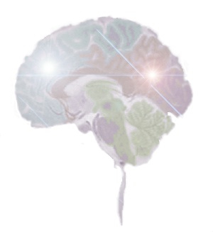 colored brain picture